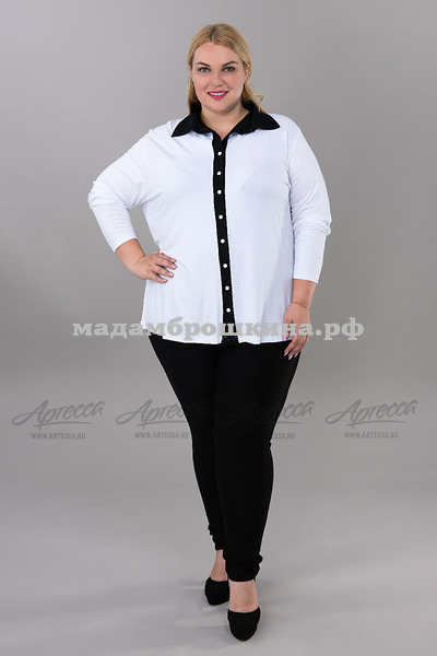 Блуза Актив (фото, вид 1)