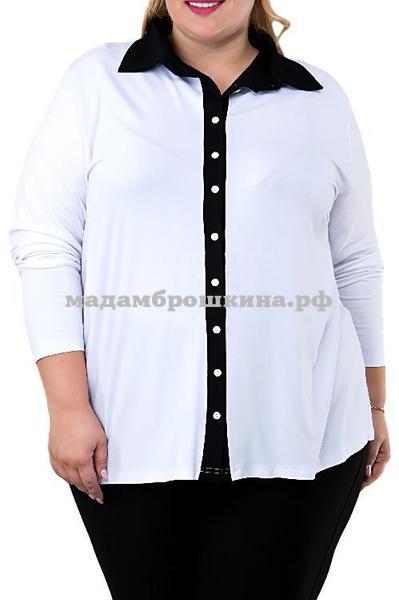 Блуза Актив (фото)