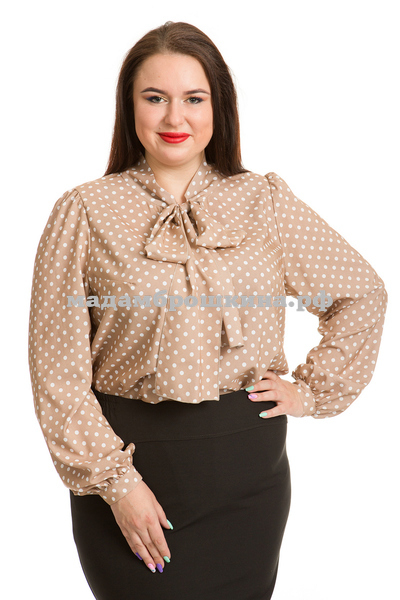 Блуза Латте (фото)